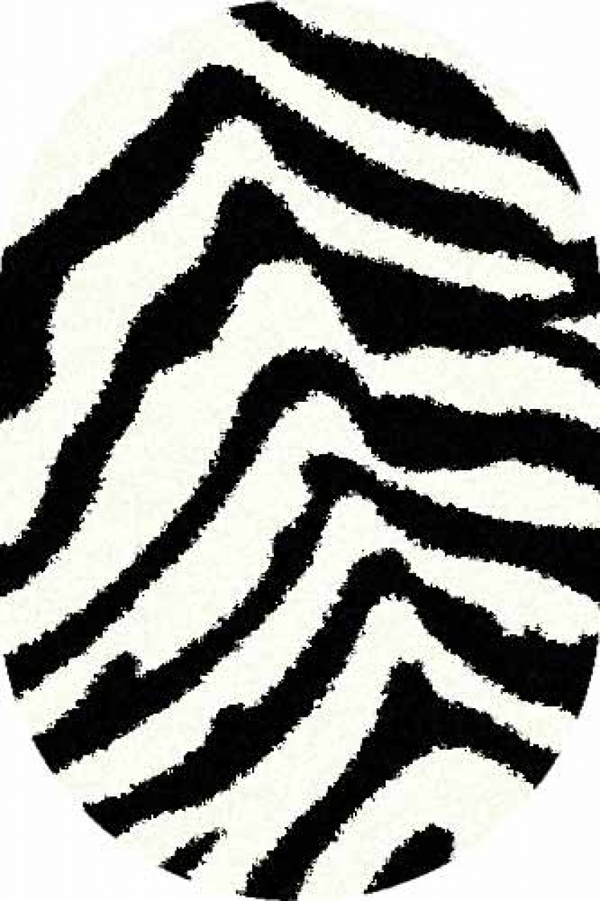 Ковер s604 - BONE-BLACK - Овал - коллекция SHAGGY ULTRA