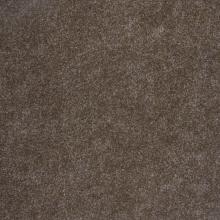 Ковровая дорожка 0300 - BRUIN - коллекция Gent