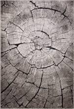 Ковер 2864 - BEIGE-BLACK - Прямоугольник - коллекция IBIZA - фото 2